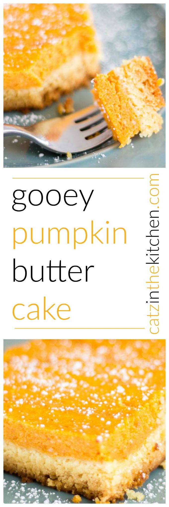 Gooey Pumpkin Butter Cake   Catz in the Kitchen   catzinthekitchen.com   #cake #recipe #pumpkin #Thanksgiving