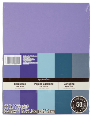 Recollections Cardstock
