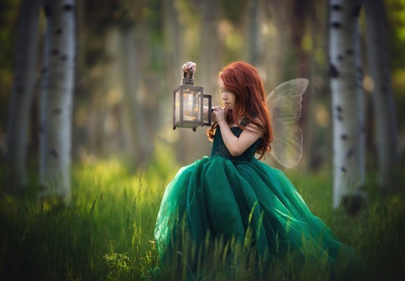 Image by Lisa Holloway