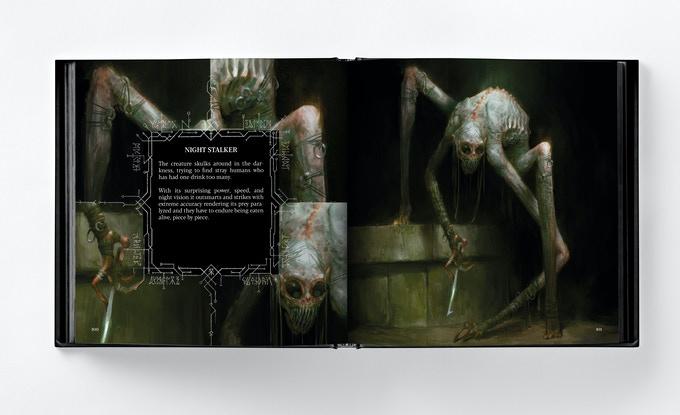 L'observateur de la nuit, dans Abominations de Bjorn Hurri.