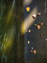 VPir_11_2013-10