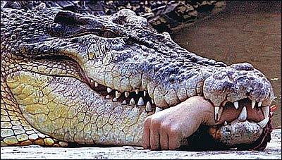 Angrier Croc