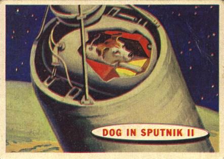 laika-sputnik-2
