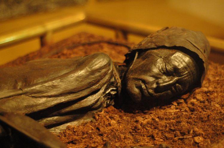 tollund man bog mummy
