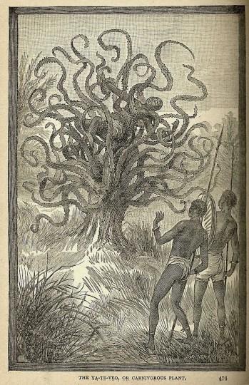 man-eating-tree