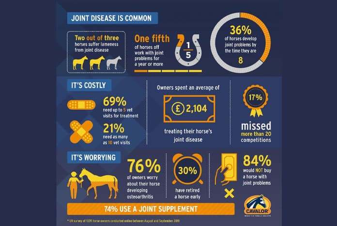 Equine Joint Disease Survey
