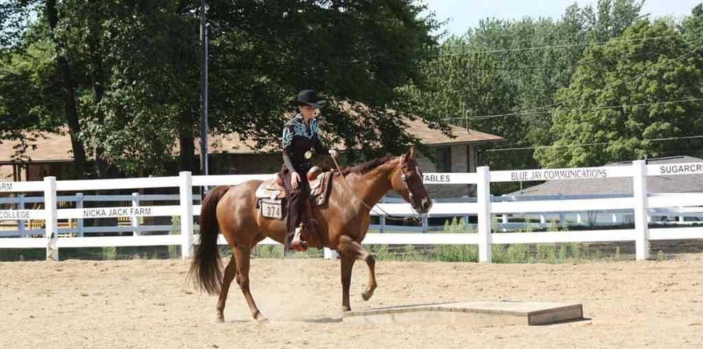 Aprenda exercícios para melhorar a equitação durante provas