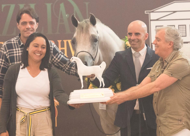 Haras Sahara recebe premio de Breeders Cup 2018