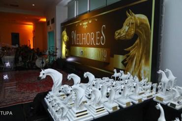 Melhores do ano 2018/2019 do Cavalo Árabe