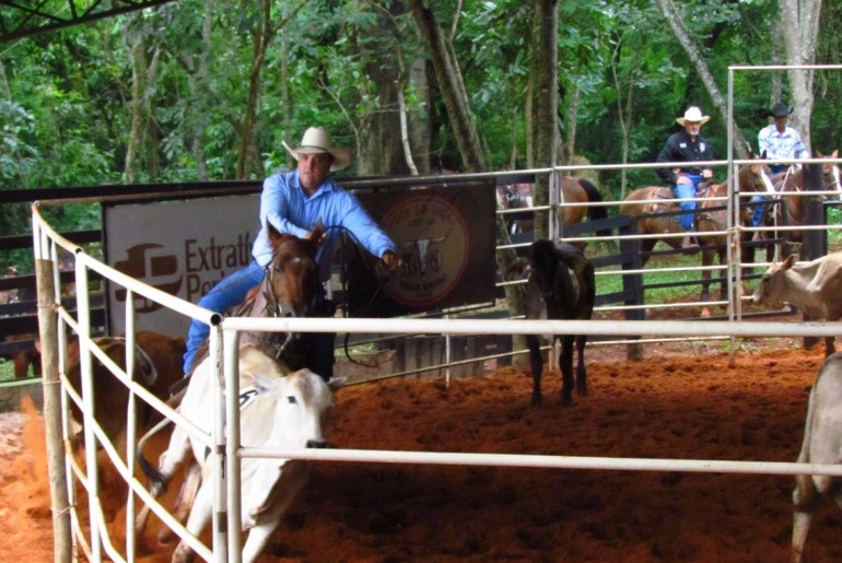Dada a largada para a 3ª Copa West Wind de Ranch Sorting RSNC