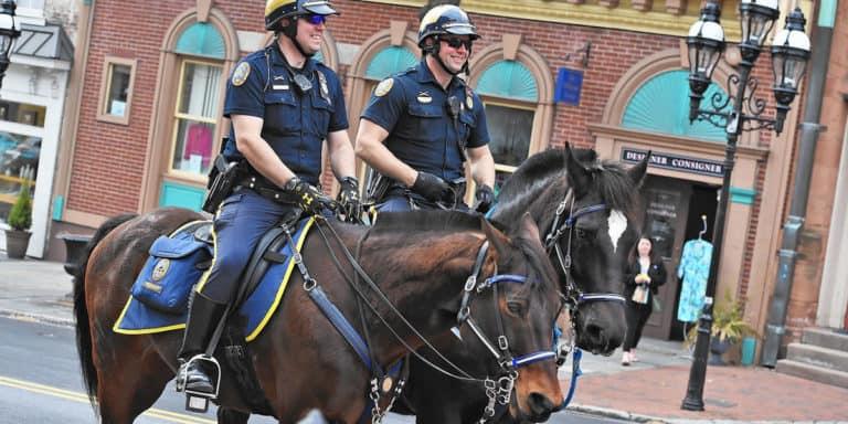 Saiba como os cavalos policiais são treinados nos Estados Unidos