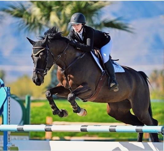 Conheça o cavalo da vida real de Georgie de Hartland