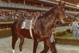 Ruffian foi uma estrela da Corrida nos anos 1970