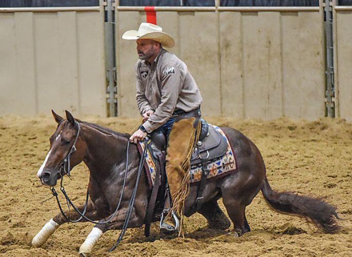 Crey Zee é coroado Cavalo do Ano Open pela NCHA