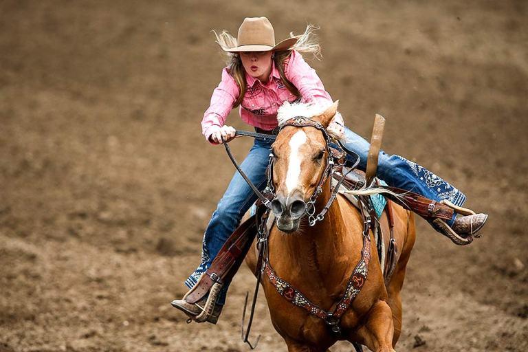 Cavalo de Tambor é muito mais do que um atleta