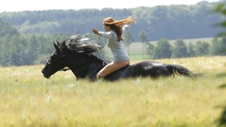 Ostwind – Livres como o vento