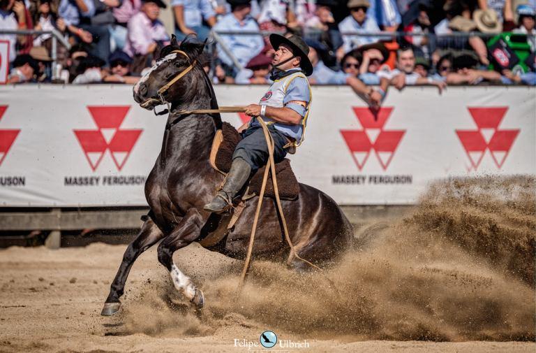 Cavalo Crioulo retoma provas nesta quinta-feira após quarentena da Covid-19
