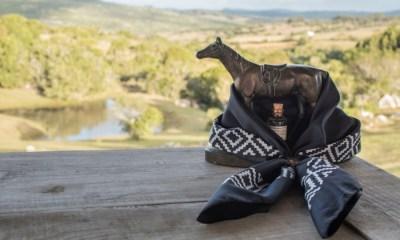 Roteiros de Charme a Cavalo: Paulo Junqueira, em sua coluna da semana, apresenta cavalgadas por lugares onde o glamour impera