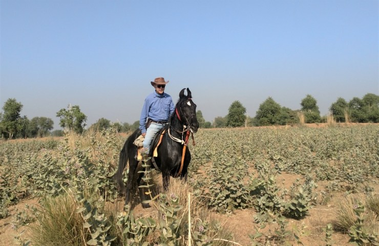 Paulo Junqueira, em sua coluna da semana, encerra essa viagem surpreendentemente glamorosa através das cavalgadas mais luxuosas