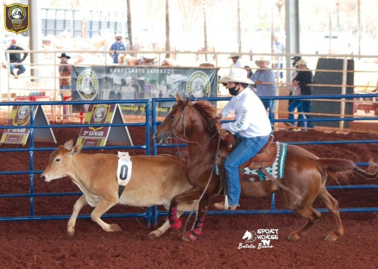 2ª Prova de Ranch Sorting quebra recorde de inscritos, realizada pelo Campeonato Barretos, a maior prova oficializada de todos os tempos