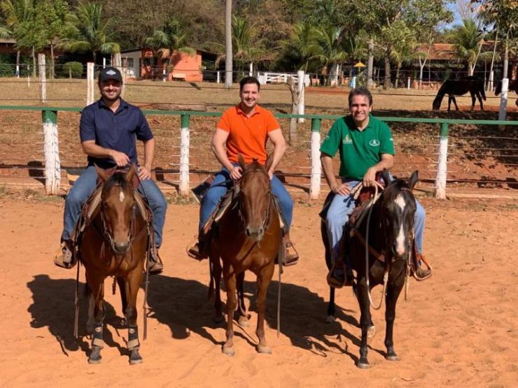 Conversamos com o pessoal do CT Estância da Mata para entender melhor sobre o melhor animal para Ranch Sorting; existe o cavalo ideal?