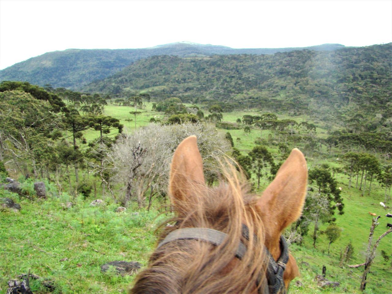 Expedição a cavalo em Campo dos Padres – Santa Catarina