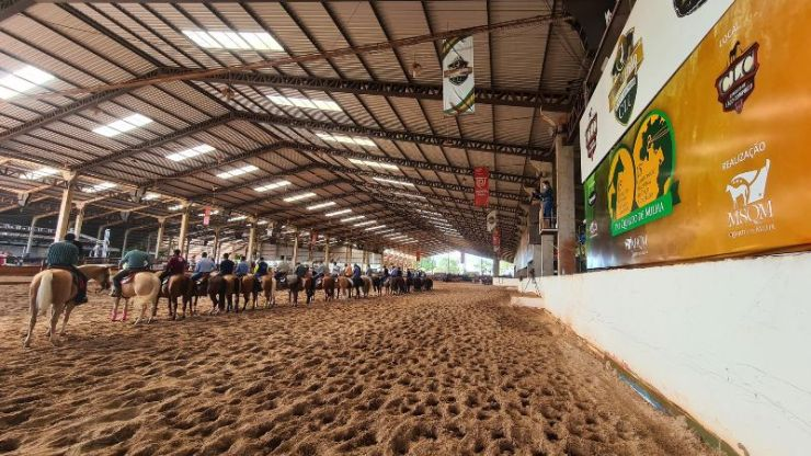 As provas do Potro do Futuro e do Campeonato Nacional do Quarto de Milha na modalidade Laço Comprido cresceram em 2020