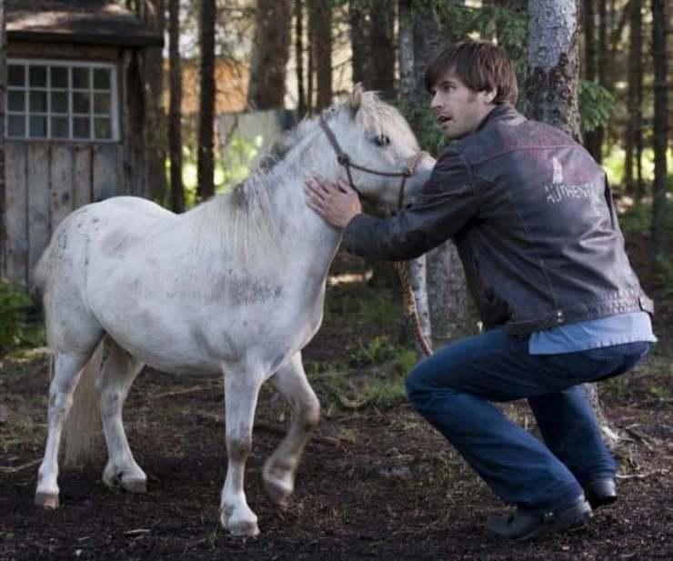 Graham Wardle conta que aprendeu a amar os cavalos enquanto filmava a série canadense Heartland; só aprendeu a montar dias antes do início