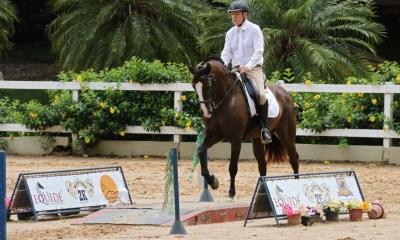 A Associação Brasileira de Equitação de Trabalho encerrou 2020 com sucesso total. O Campeonato Brasileiro Virtual aconteceu de 1° a 5 de nov