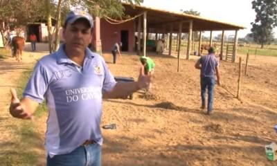 No Mensagem a Cavalo de TV UC você vai saber como manter o solário - uma espécie de cocheira ao ar livre - sempre limpo