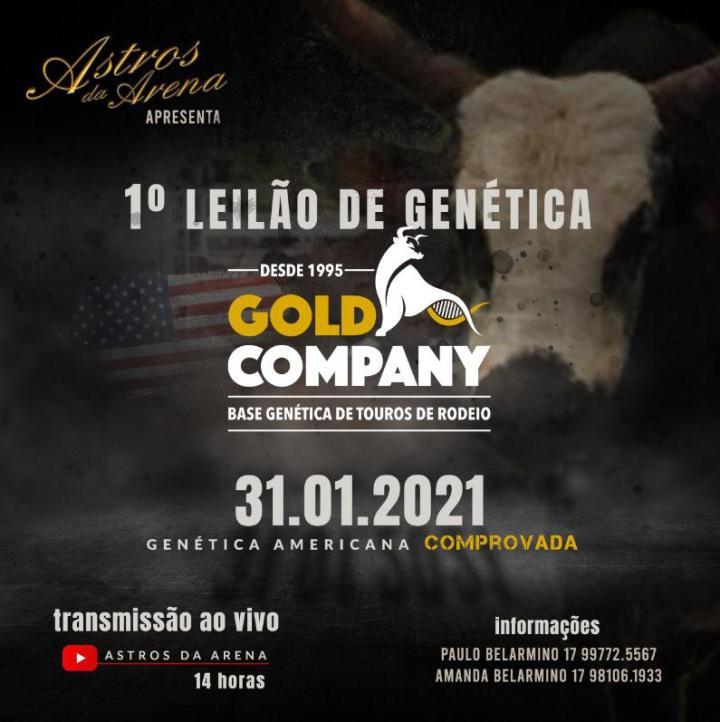 O 1º Leilão Gold Company acontece dia 31 de janeiro através do Youtube e oferta a melhor genética importada de touro de rodeio do mercado