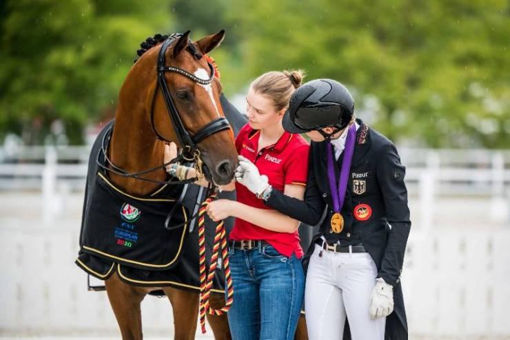 parceiro do seu cavalo: seja aquele melhor amigo que seu cavalo vai ficar feliz em carregar durante todo o ano; confira essas dicas!