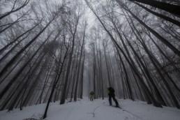 Slanské vrchy smer Čierna hora