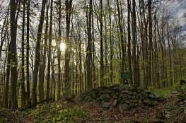 Barikáda pri vstupe do rezervácie Vlčia