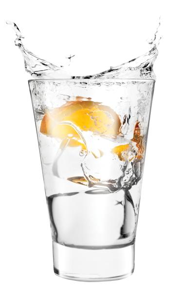 Vodkas - Gins - Tequilas