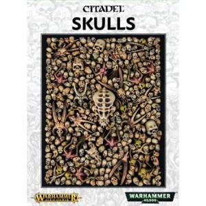 Citadel Skulls 64-29
