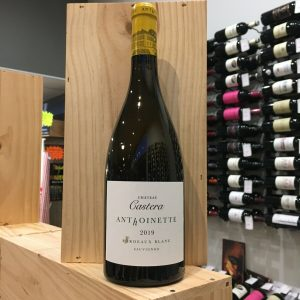 ANTHOINETTE 19 rotated - Les vins