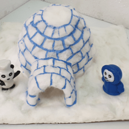 Igloo Science Project