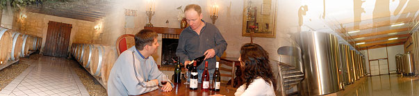 Domaine du raiffault viticulteur à la cave monplaisir de chinon