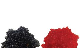 Image result for lumpfish roe