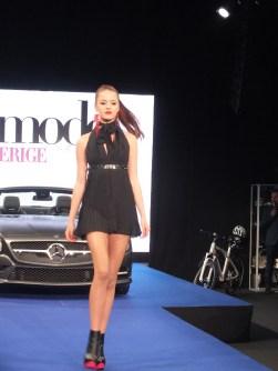 Top Model Sverige
