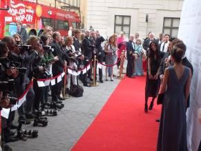 Red carpet - röda mattan för kungligheter