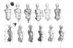 blocagem anatomia 02