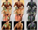 musculos costas