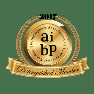 aibp-2017-color (1)