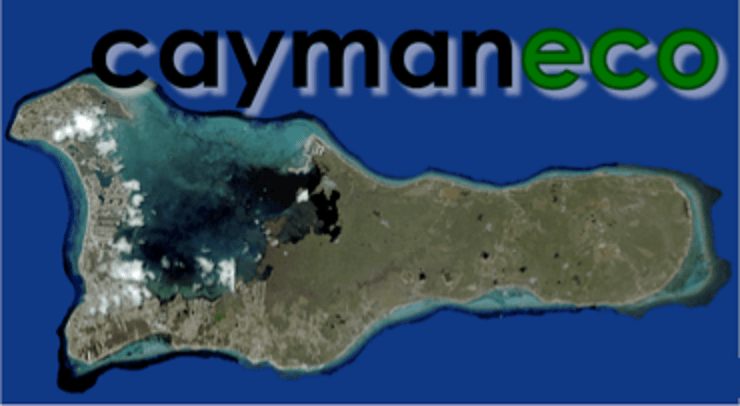 Cayman Eco - Beyond Cayman How It Feels Living in a City ...