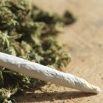 Jamaica to issue ganja licences in April