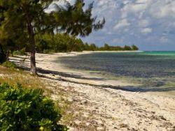 Barkers Beach, Cayman Islands, Cayman News Service