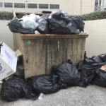 DEH still struggling with garbage collection