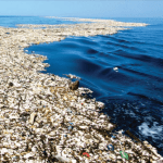 Caribbean hotbed of pollution, report warns